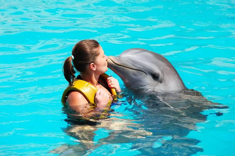 Dolphin bay - cose da fare a Dubai